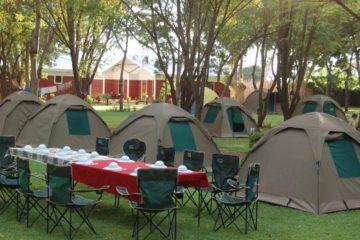 4 days tanzania group join safari