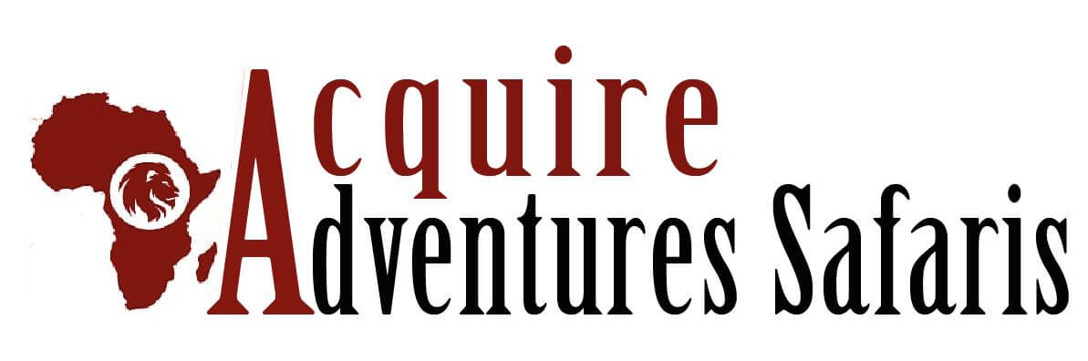 Acquire Adventures Safaris