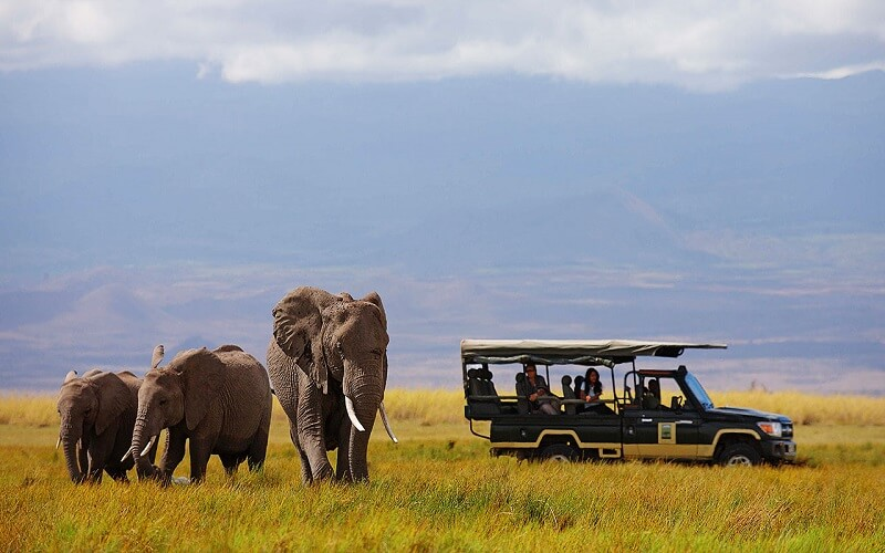 13 Days East Africa luxury air safari