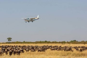 13 Days East Africa luxury air safari
