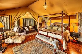 Luxury Kenya safari holiday 8 days