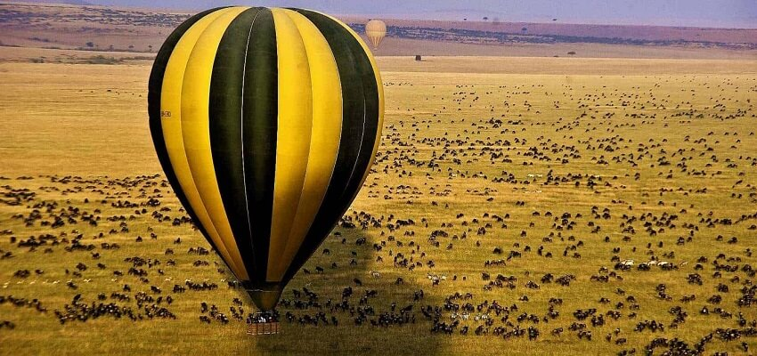 5 days masai mara luxury safari