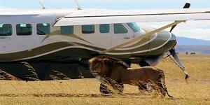 KENYA FLYING SAFARI PACKAGES